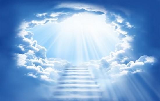 http://www.topactualno.com/wp-content/uploads/2014/08/reincarnation.jpg