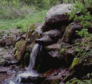 voda-jiva