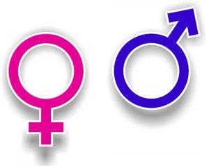 Мозъкът на двата пола е устроен различно