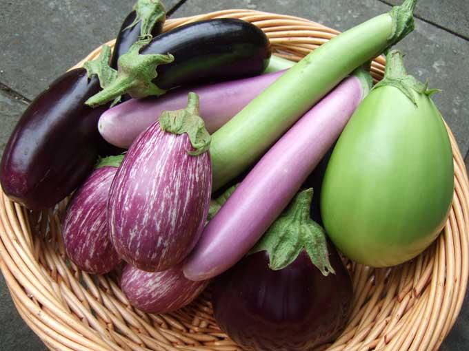 patladjan-salati