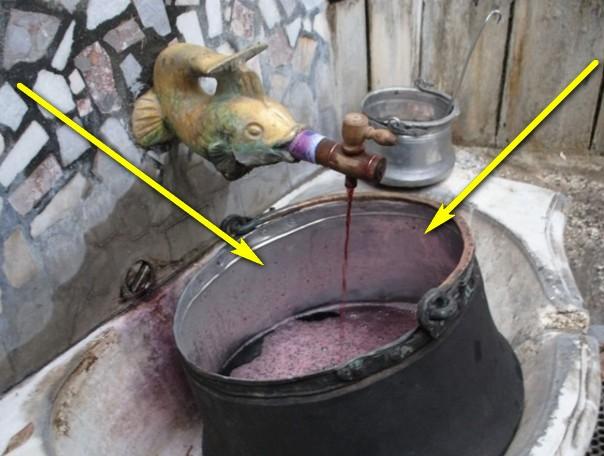 asenovgrad-vino