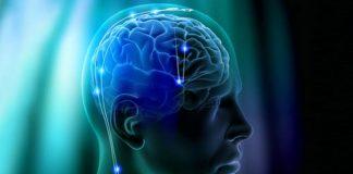 мозъчните клетки