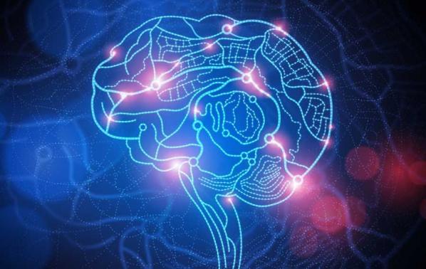 интелигентност и псуване са пряко свързани