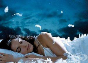 сънища