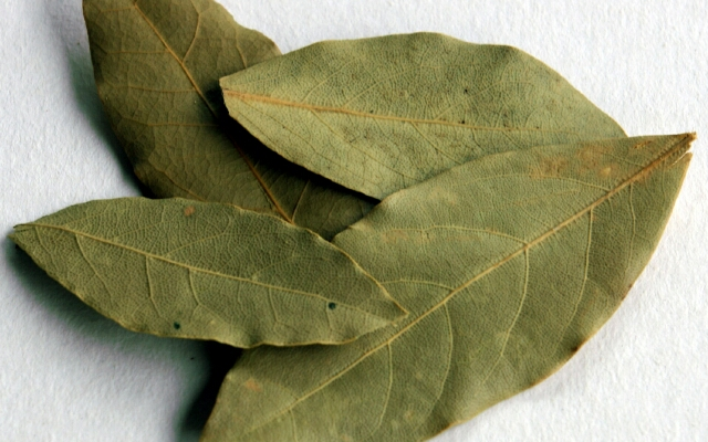 дафинов лист