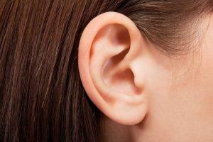 ушите