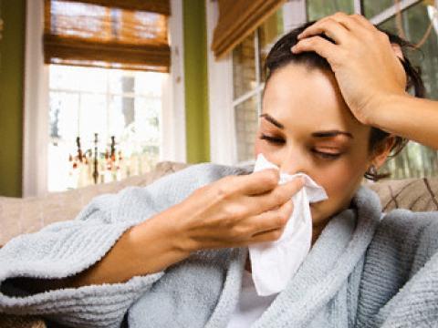 настинките
