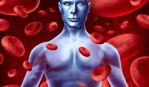 хемоглобин