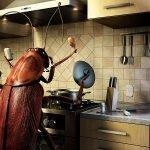 насекоми